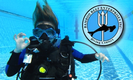 $25 for a Try Scuba Diving Lesson at Bamboo Reef