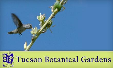 Tucson-botanical-gardens