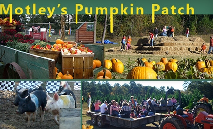 $6 for Two Tickets to Motley's Pumpkin Patch ($12 Value)