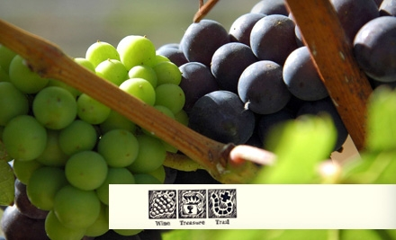 $40 for a Four-Stop Winery Treasure Hunt with Tastings from Wine Treasure Trails ($75 Value)