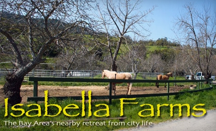 $139 for a One-Hour Horseback-Riding Lesson, One-Hour Stable Visit, and Three-Hour Trail Ride at Isabella Farms ($300 Value)