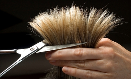 $75 for a Haircut and Color at Studio 290 in Mill Valley (Up to $180 Value)