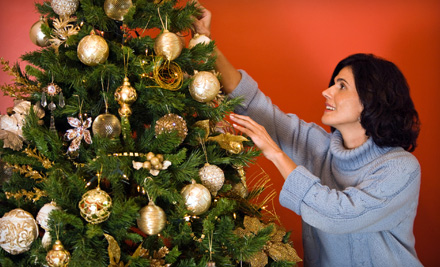 $39 for a Fir Christmas Tree Up to 10 Feet Tall at Toby's Christmas Trees in Walnut Creek (Up to $80 Value)