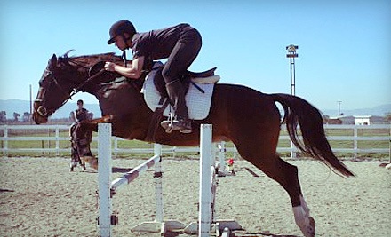One or Four Horseback-Riding Lessons or Intro to Horses Lesson at Airdance Farm in Livermore (Up to 59% Off)