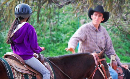 Two or Four Horseback-Riding Lessons or a Five-Day Horsemanship Summer Camp at JM Performance Horse (Up to 51% Off)