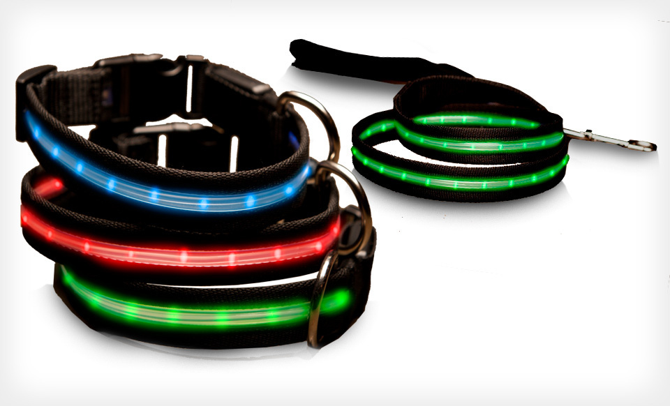 ShopTough LED Pet Collars and Leashes (Up to 78% Off). Multiple Colors and Sizes Available. Free Returns.