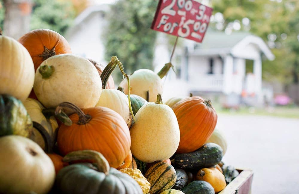 10 Fall Event Ideas to Promote Your Business