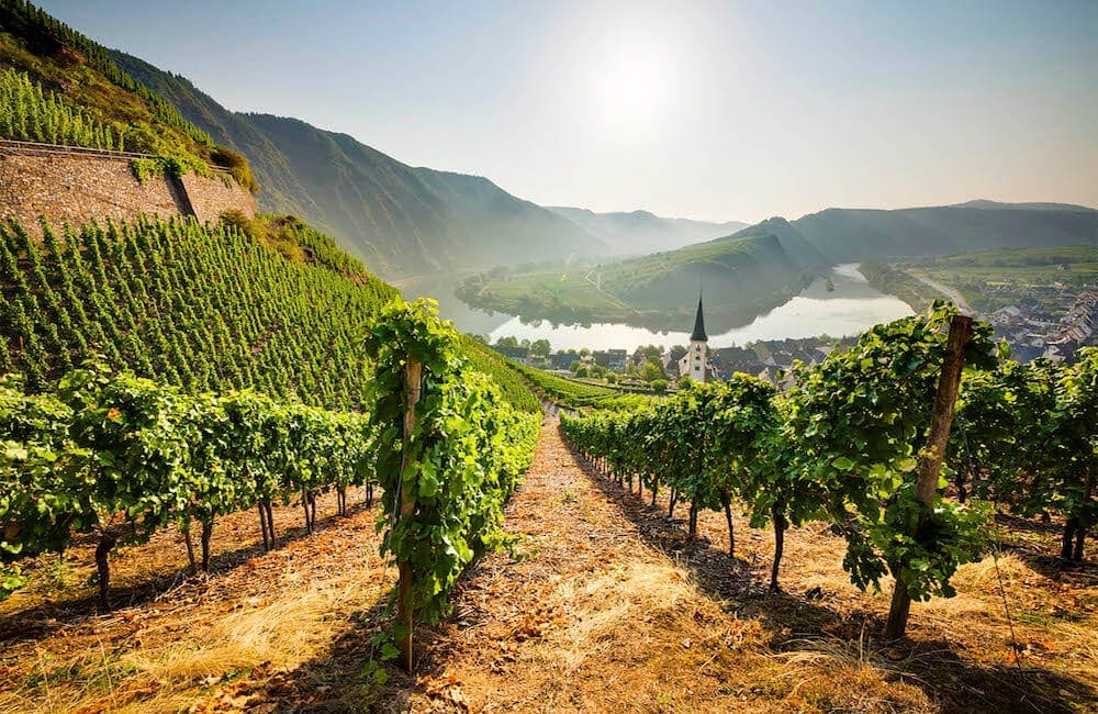 5 Ways to Promote Your Wine Tours
